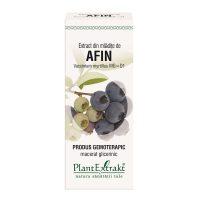 afin-vaccinium-myrtillus