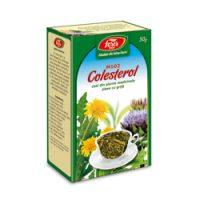 1Colesterol-PG